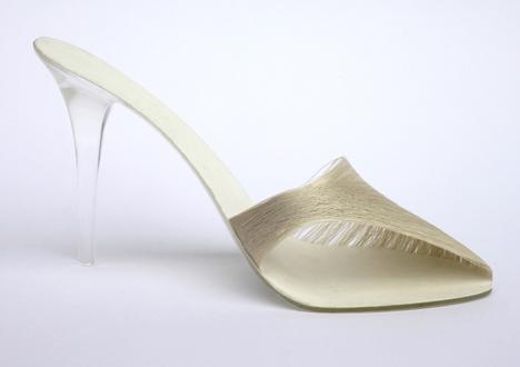 silk shoe 2